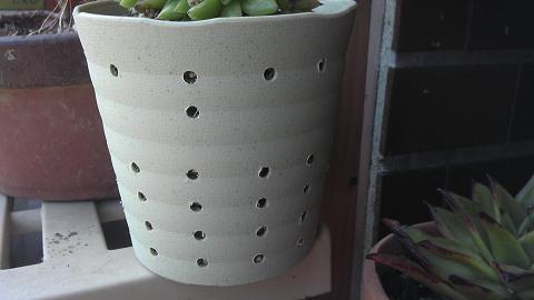 植え替え先の鉢.JPG